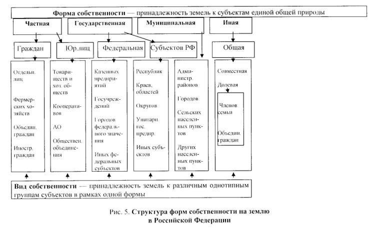 Рис 6 схема типов и форм собственности